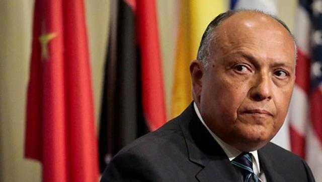 وزير الخارجية: منتدى أسوان يهدف إلى تعزيز الشراكة بين الدول الأفريقية
