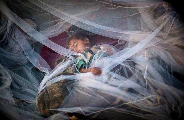 يقتل طفلا كل دقيقتين.. المرض الأشرس في أفريقيا يلتهم الملايين