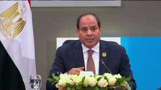 السيسي : العالم أجمع أشاد بالتجربة المصرية.. وثورة يناير مطالبها نبيلة (فيديو)