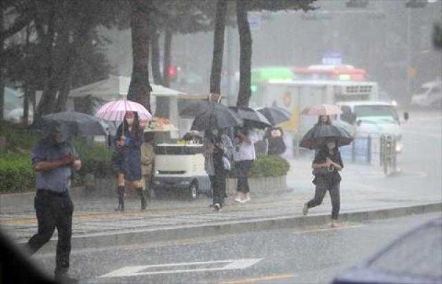 7 مدن متضررة من الأمطار فى كوريا الجنوبية.. تعرف عليها