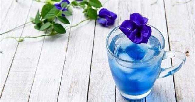 هل تعرفه؟.. 5 فوائد مذهلة لـ الشاي الأزرق