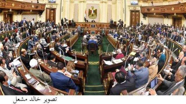 شكري أمام البرلمان: لنننجرف لإطالة أمد مفاوضات السد الإثيوبي