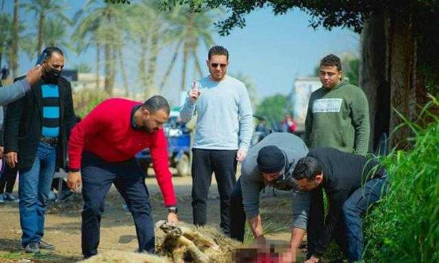 خروفين في أول يوم تصوير لفيلم الفارس