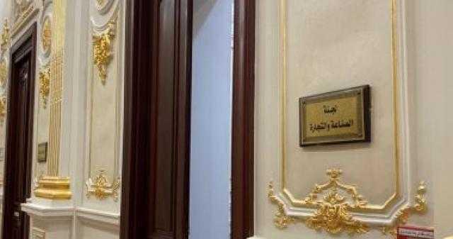 عاجل.. حنان أبو العزم رئيسا للجنة الصناعة