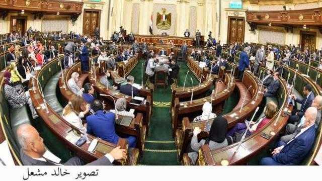 برلماني: دعم الشركات المصرية بالخارج يأتي من خلال الإعلام والحكومة