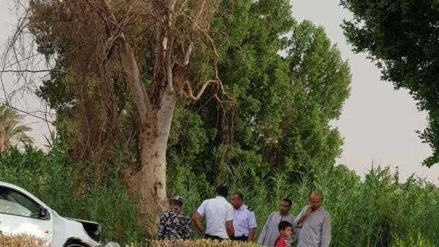 عاجل.. سقوط شجرة ضخمة يتسبب في قطع طريق المراسي بالأقصر
