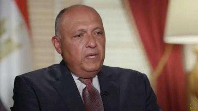 شكري: مصر ستستمر في السعي لاستئناف العملية السلمية بفلسطين