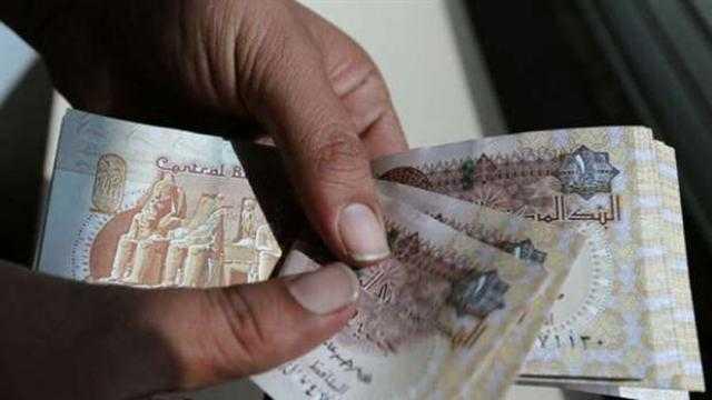 خطة النواب: اختفاء العملات الورقية بعد فترة انتقالية من 5 إلى 7 سنوات