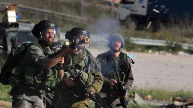 فلسطينية تواجه مستوطنًا إسرائيليّا بالشيخ جراح.. طالع التفاصيل