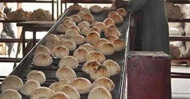 الإحصاء: متوسط نصيب الفرد من الخبز البلدي في اليوم رغيفين