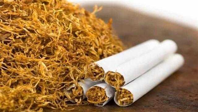 187 مليون دولار واردات مصر من التبغ خلال 6 أشهر