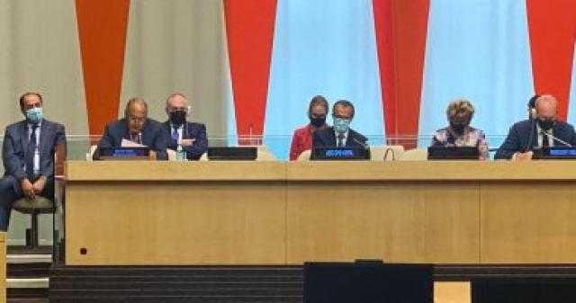 أبو الغيط: ما تُمثله تجربة العمل الدولي بشأن الأزمة الليبية نموذج إيجابي