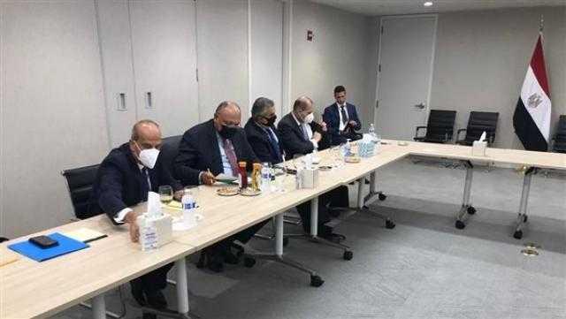 لقاءات الأمم المتحدة.. سامح شكري يجتمع مع وزير خارجية النيجر
