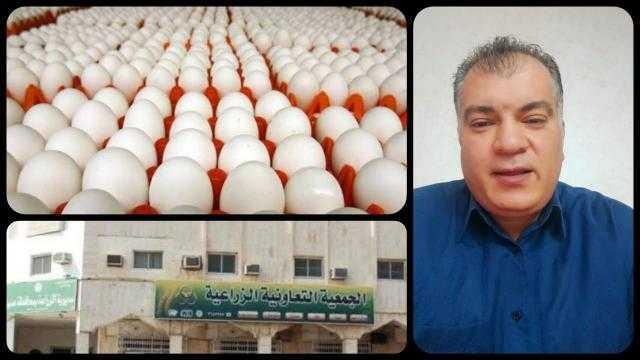 محمد الزيات عن ارتفاع سعر البيض: «المستهلك هو من يدفع الثمن»