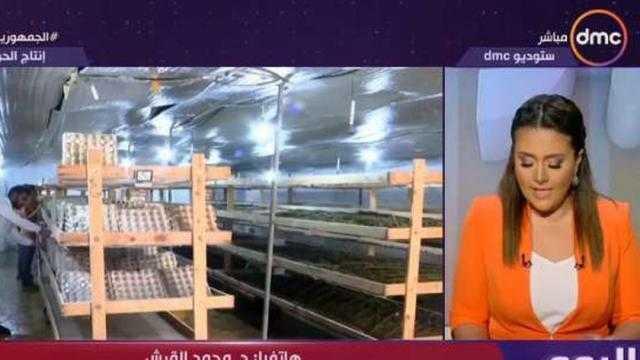 الزراعة: تدشين مشروع كبير لاستعادة رونق الحرير المصري مرة أخرى