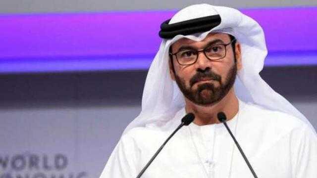 وزير شؤون مجلس وزراء الإمارات: مصر تقود العرب نحو مستقبل جديد